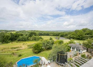 Thumbnail 7 bed equestrian property for sale in Rock Lane, Guestling, Hastings, East Sussex