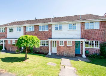 Thumbnail 3 bed terraced house for sale in Springfield Avenue, Hartley Wintney, Hook