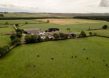Thumbnail Farm for sale in Mouswald, Dumfries