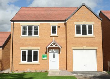 "Thumbnail 4 bed detached house for sale in ""The Winster"" at Brookside, East Leake, Loughborough"