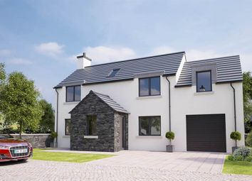 Thumbnail 4 bed detached house for sale in Site 3 Lecale Park, Downpatrick