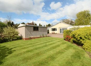 Thumbnail 4 bed bungalow for sale in Newport Road, Stafford