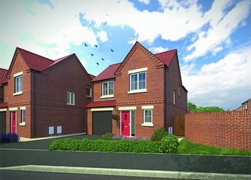 Thumbnail 3 bed detached house for sale in Rufford Oaks, Ollerton, Newark, Nottinghamshire