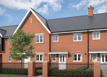 Thumbnail 3 bed terraced house for sale in The Elder At Countryside At Chesterwell, Nayland Road, Mile End, Colchester, Essex