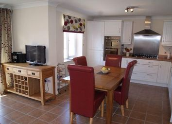 Thumbnail 4 bed detached house to rent in Wood Avens Way, Desborough, Northants