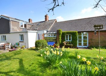 Thumbnail 4 bed detached house for sale in High Street, Thorncombe, Chard