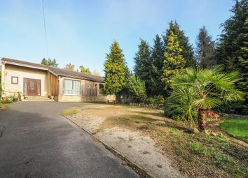 Thumbnail 4 bedroom detached bungalow for sale in Kennington, Oxford