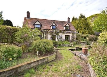 Thumbnail 3 bed cottage for sale in Bunnetts Loke, Lyng, Norwich