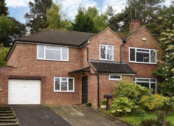 Thumbnail 4 bed semi-detached house to rent in Arundel Road, Camberley