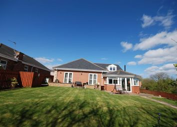 Thumbnail 3 bed detached bungalow for sale in First Row, Linton Colliery, Morpeth