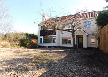 Thumbnail 4 bed semi-detached house for sale in The Lane, Creeting St. Peter, Ipswich