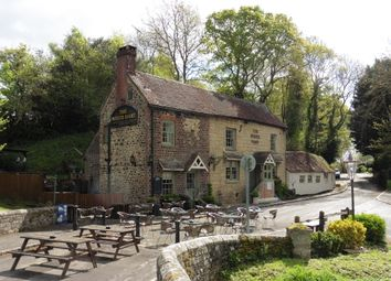 Thumbnail Pub/bar for sale in Stopham Road, West Sussex: Pulborough