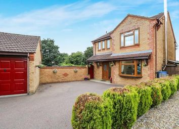 Thumbnail 4 bedroom detached house for sale in Watton, Thetford