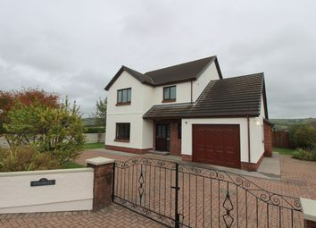 Thumbnail 3 bed detached house for sale in Rhydargaeau, Carmarthen