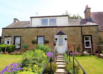 Thumbnail 4 bed semi-detached house to rent in Ladybank Road, Pitlessie, Cupar