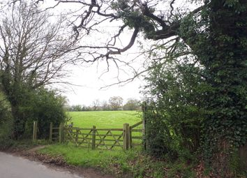Thumbnail Land for sale in Colam Lane, Little Baddow, Chelmsford
