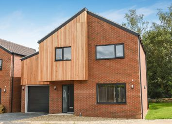 Thumbnail 4 bed detached house to rent in Manor Road, Griston, Thetford