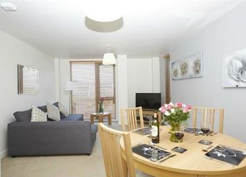 Thumbnail 1 bed flat to rent in Shandy Street, London