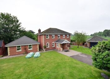 Thumbnail 3 bed detached house for sale in Fenside Road, Boston