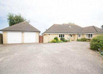 Thumbnail 4 bed detached bungalow for sale in Westleaze, Charminster, Dorchester