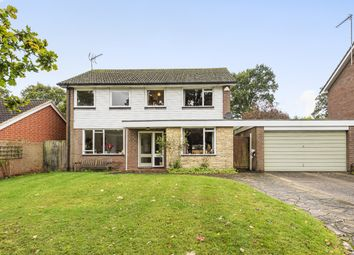 Thumbnail 4 bed detached house for sale in Grebe Crescent, Horsham