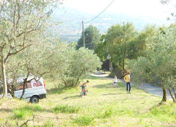 Thumbnail Land for sale in Belle Viste, Citerna, Umbria