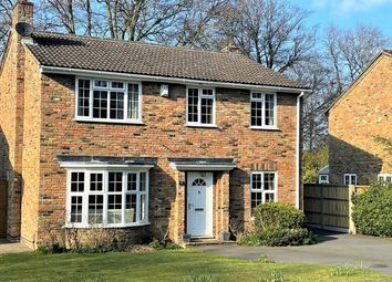Thumbnail 4 bed detached house for sale in Shalbourne Rise, Camberley, Surrey