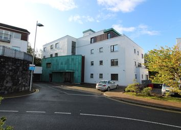 Thumbnail Apartment for sale in Apartment 18 Sailin, Wellpark, Galway