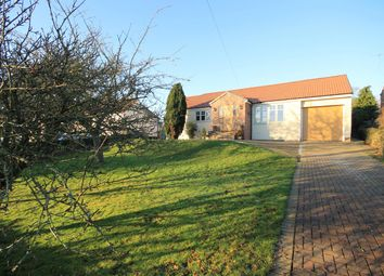 Thumbnail 4 bedroom detached bungalow for sale in Thornton Le Beans, Northallerton