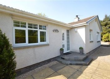 Thumbnail 3 bed detached bungalow for sale in Station Road, Muirhead, Glasgow