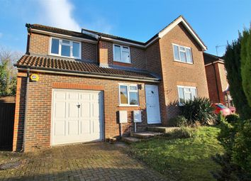 Thumbnail 4 bed detached house to rent in Greenfinch Way, Horsham