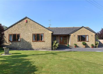 Thumbnail 5 bedroom detached bungalow for sale in Back Drove, Leigh, Sherborne, Dorset