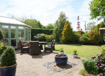 Thumbnail 4 bedroom detached house for sale in Hadleigh Road, Holton St Mary, Ipswich, Suffolk