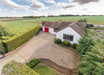 Thumbnail 3 bed detached bungalow for sale in Pudding Lane, Birch, Colchester