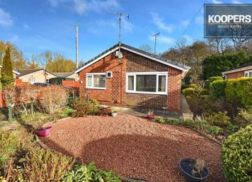 Thumbnail 3 bed detached bungalow for sale in Padley Close, Ripley