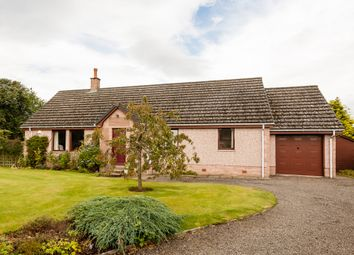 Thumbnail 4 bedroom detached house for sale in Main Street, Ardler, Perth And Kinross