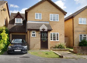 Thumbnail 3 bed detached house to rent in Pampas Close, Highwoods, Colchester