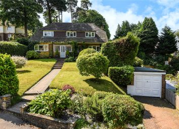Thumbnail 4 bed detached house for sale in Beaufront Road, Camberley, Surrey