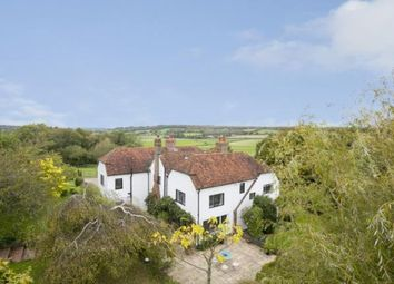 Thumbnail 5 bed equestrian property for sale in Udimore, Rye, East Sussex