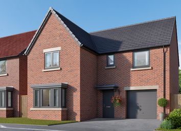 "Thumbnail 4 bed detached house for sale in ""The Grainger"" at Cautley Drive, Killinghall, Harrogate"