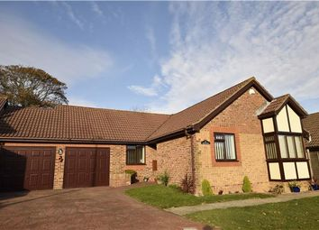 Thumbnail 3 bed detached bungalow for sale in Fairfield Chase, Bexhill, East Sussex