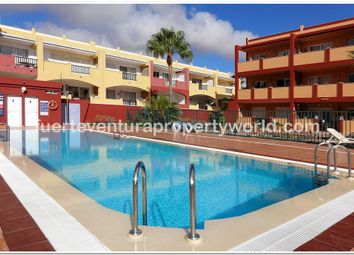 Thumbnail Apartment for sale in Parque Holandes, Fuerteventura, Canary Islands, Spain
