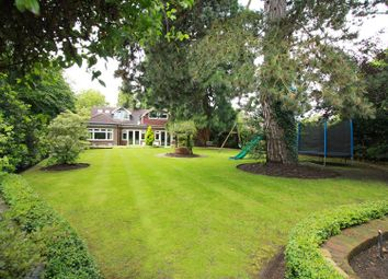 Thumbnail 3 bed detached house for sale in Williams Way, Radlett