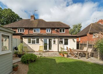 Thumbnail 4 bed semi-detached house for sale in Homefield Cottages, Highfield Lane, Thursley, Godalming