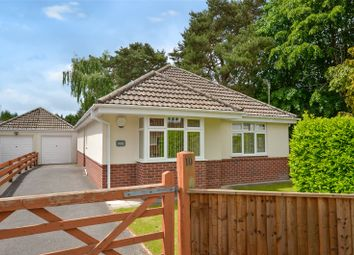 Thumbnail 3 bedroom bungalow for sale in Firs Glen Road, West Moors, Ferndown, Dorset