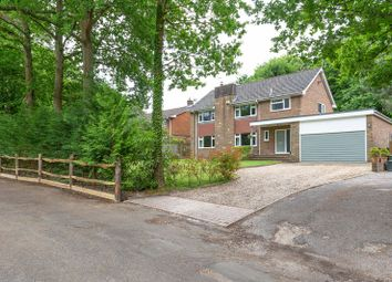 5 bed detached house for sale in Chestnut Walk, Felcourt, West Sussex RH19