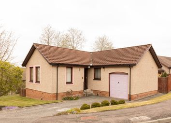 3 bed bungalow for sale in Geddes Drive, Perth PH1