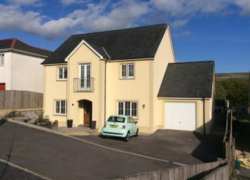 Thumbnail 6 bed detached house for sale in Wernddu Road, Ammanford