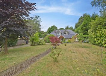 Thumbnail 4 bed bungalow for sale in Plantation Road, Hill Brow, Liss, Hampshire