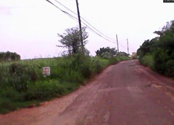 Thumbnail Land for sale in St Elizabeth, Cornwall, Jamaica
